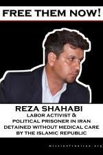 free-reza-shahabi