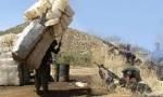 قتل کولبران . سیروان برزنجی